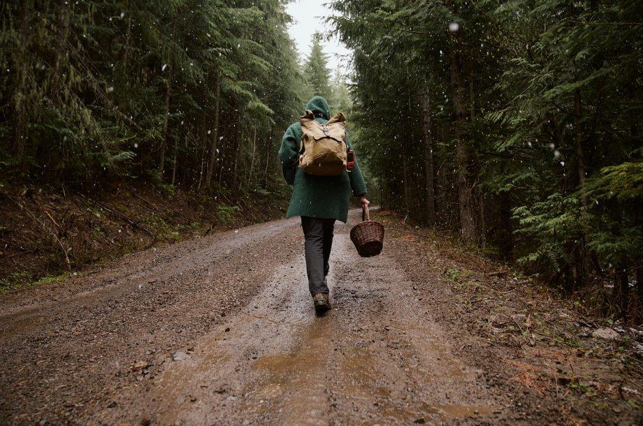 Mushroom Hunting with Yellow Elanor and the Biwa™